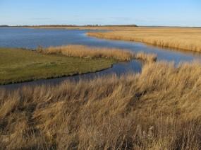 slenk onder Lauwersmeer Friesland