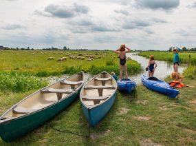 Kanus und Kajaks Lauwersmeer Friesland Niederlande