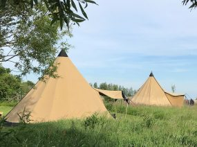 Tipi tents in the fields camping Lauwersmeer Friesland Netherlands